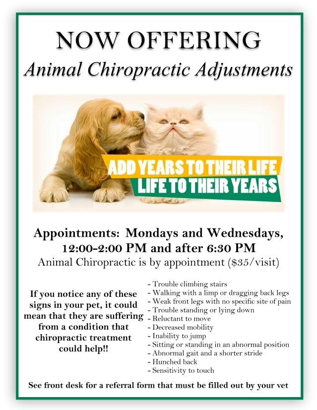 animal chiropractic flyer.png.jpg
